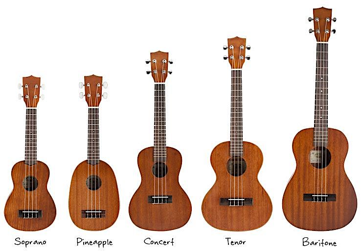 Types of Ukulele India - 7 Best Ukulele for Beginners & Experts India - Buying Guide (2020)