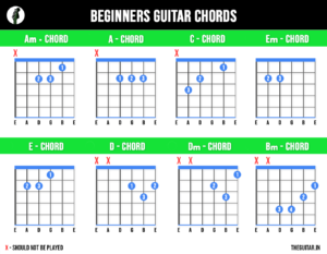 Beginners Basic Guitar Chords - TheGuitar