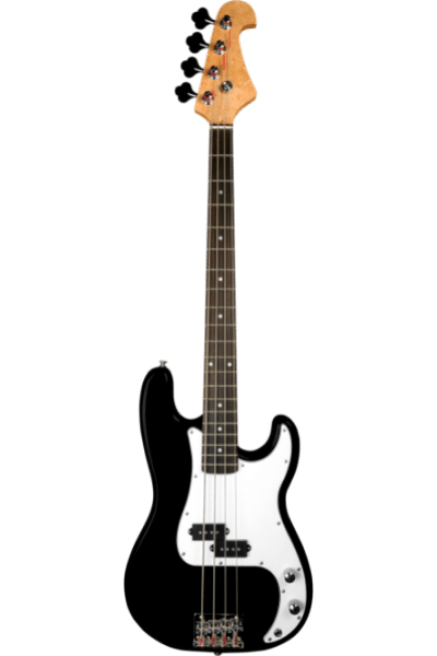 Bass Guitars - 7 Different Types of Guitar: Know These Before Buying One!